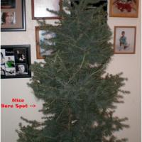 Do you name your Christmas tree? – More Author BlogHop Fun!